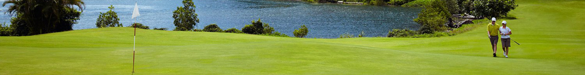 Banner image of golfing for knee replacement page